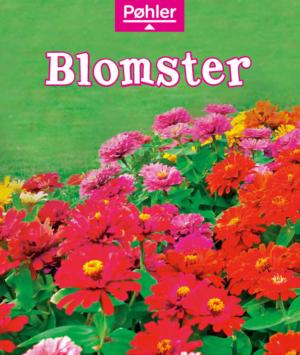 Solstrålebøger Blomster forside