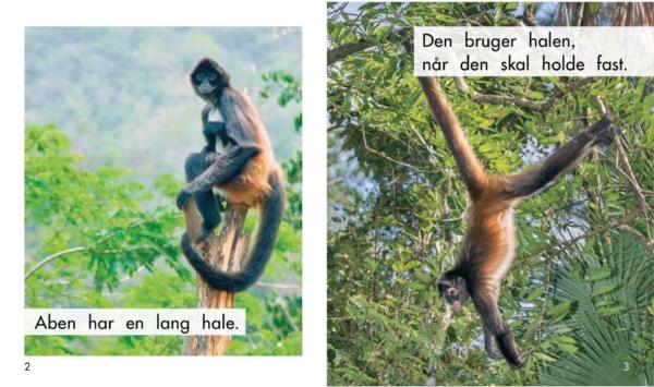 Dyrenes haler opslag